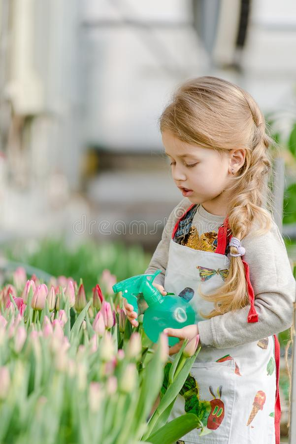 Une petite fille arrose des nappes d'eau dans la serre photo libre de droits