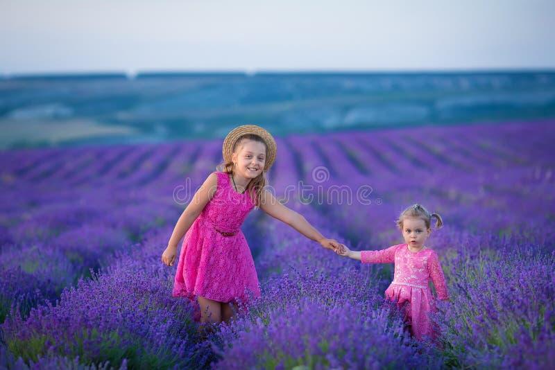 Une petite fille marche entre les gisements de lavande en Provence Scène stupéfiante de puissance de fille et de belle nature photographie stock libre de droits