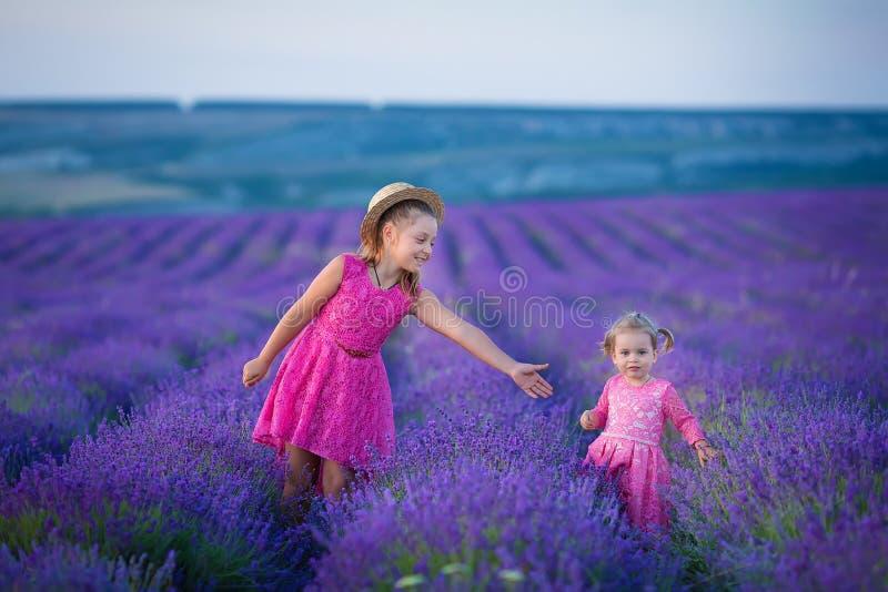 Une petite fille marche entre les gisements de lavande en Provence Scène stupéfiante de puissance de fille et de belle nature image libre de droits