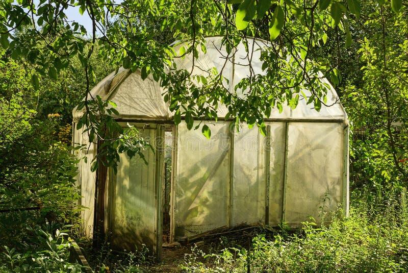 Une petite vieille serre chaude faite de bande de cellophane parmi la verdure et la végétation dans le jardin photographie stock libre de droits