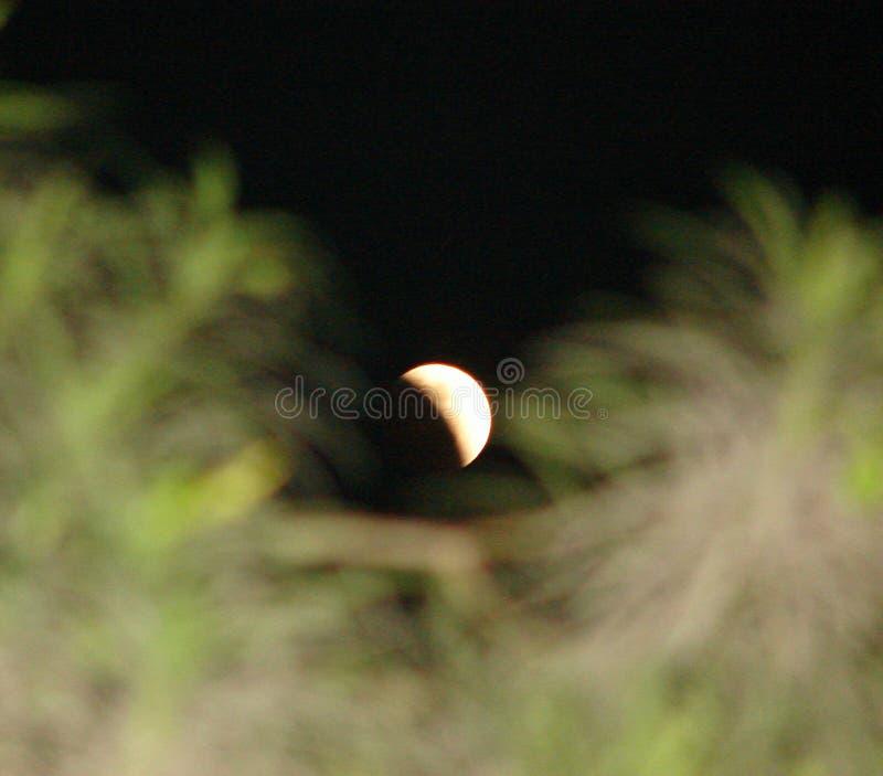 Une phase d'éclipse lunaire - éclipse de Penumbral image stock
