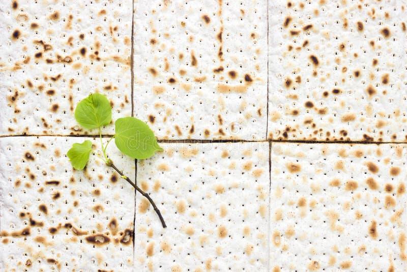 Une photo aérienne des morceaux de matzah ou de matza et d'une branche d'arbre fraîche de tilleul de petit ressort Matzah sur la  photographie stock libre de droits