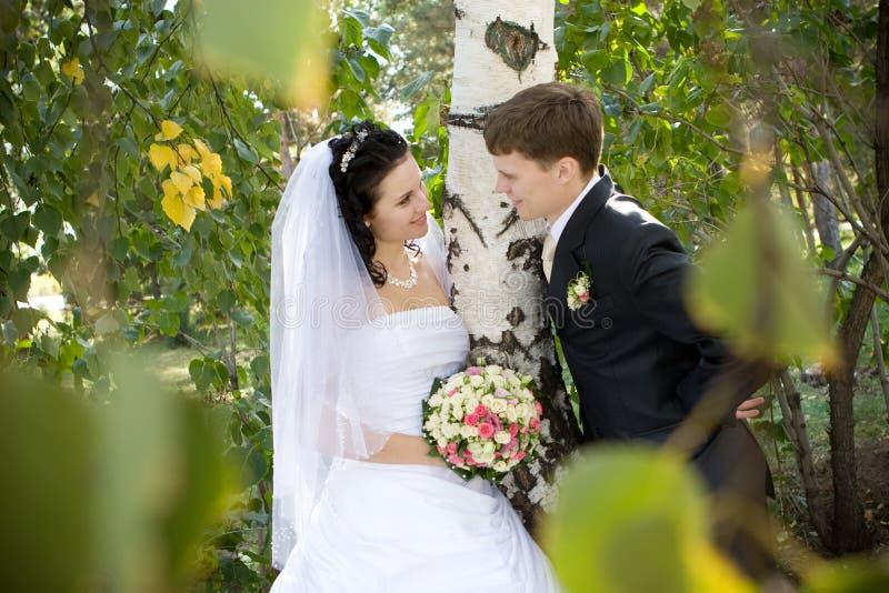 Une pièce d'un couple neuf-marié s'approchent du bouleau images stock