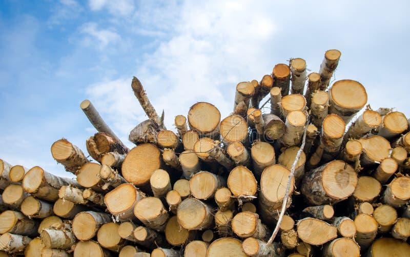 Une pile de bois image libre de droits
