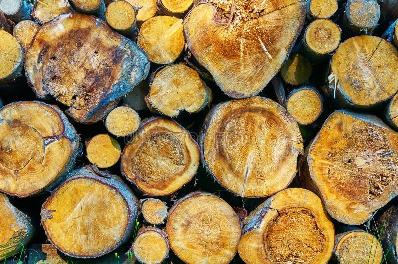 Une pile de bois photo libre de droits