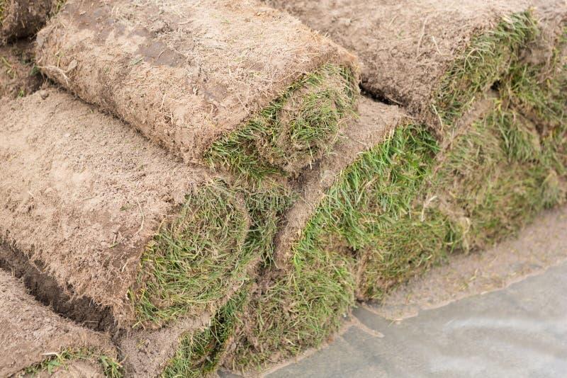 Une pile de gazon herbeux en petits pains, petit pain d'herbe, de manière opérationnelle dans l'horticulture ou l'aménagement photographie stock