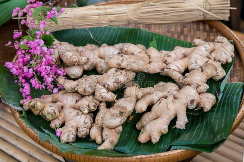 Une pile de gingembre pour la vente sur le marché de produits frais Fond brun d'or de photo de gingembre Texture de gingembre pou photos stock