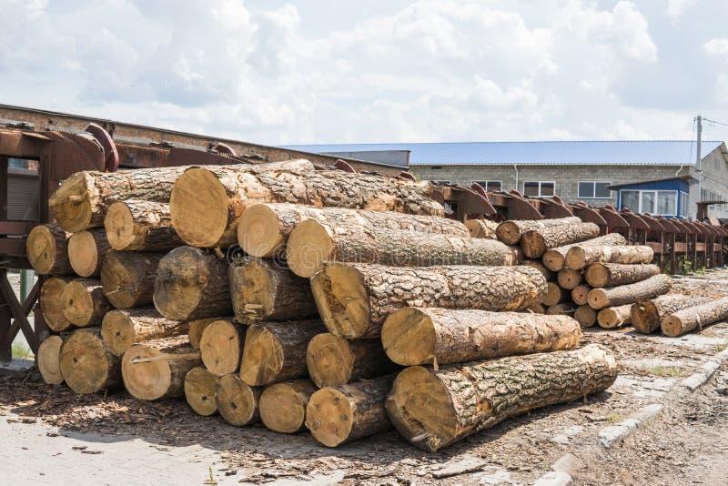 Une pile des rondins se trouvent sur une plate-forme de forêt, une scierie Traitement du bois de construction à la scierie image stock