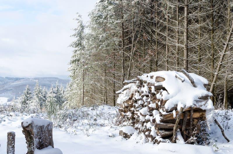 Une pile en bois sous la neige photo stock
