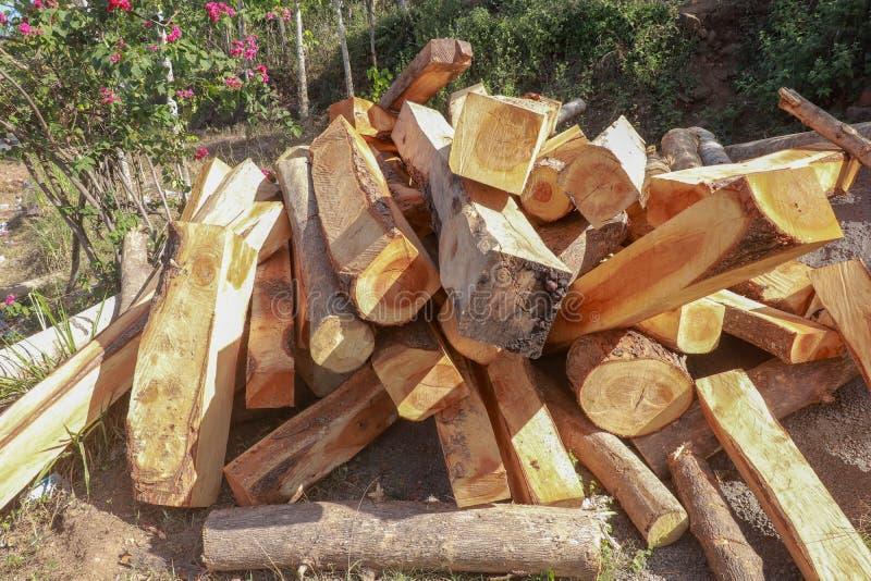 Une pile en passant empilée de bois dans un jardin de floraison Poutres en bois et rondins avec les arbres et le fond de fleurs C photo stock