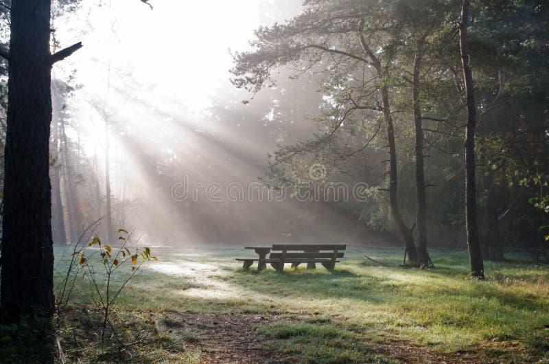 Une place à reposer et manger. photo libre de droits
