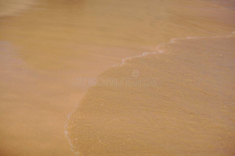 Une plage avec le sable d'or, jaune, beige, africain, vague, la chaleur, le soleil photo stock
