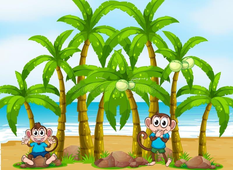 Une plage avec les arbres de noix de coco grands illustration libre de droits
