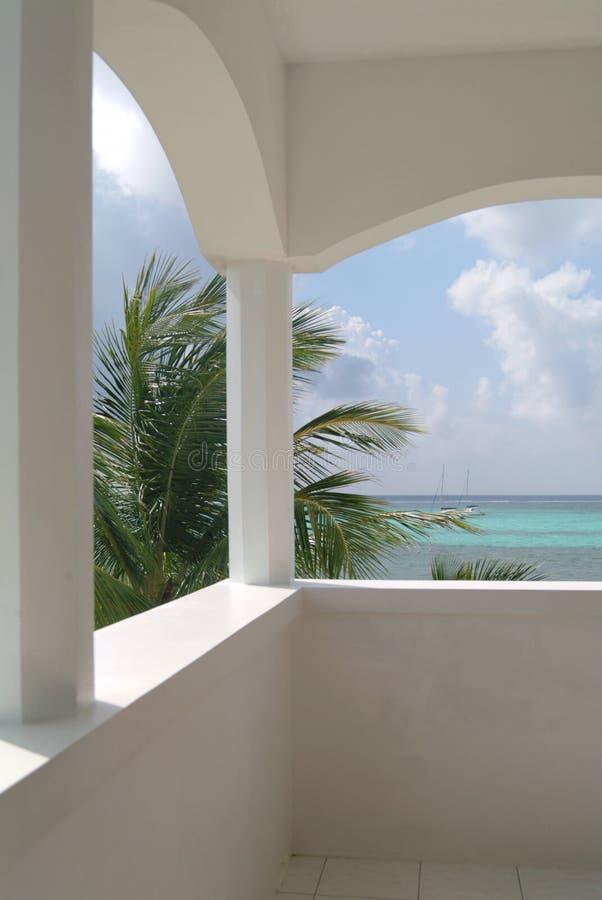 Une plage et un palmier des Caraïbes photo stock