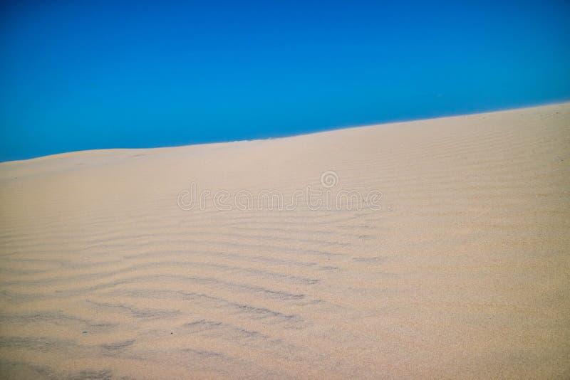 Une plage sablonneuse fine très molle en île du sud d'aumônier, le Texas image libre de droits