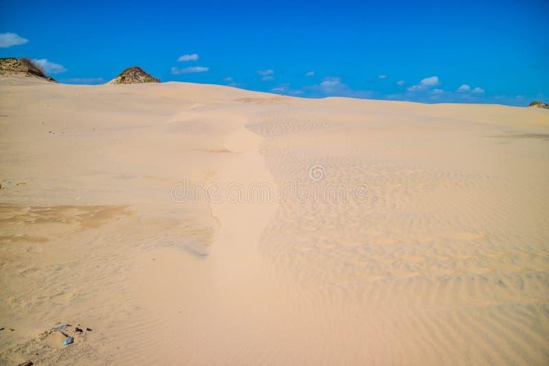 Une plage sablonneuse fine très molle en île du sud d'aumônier, le Texas photographie stock libre de droits