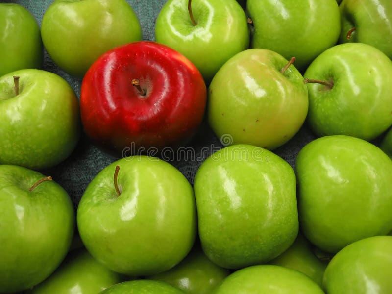 Une pomme parmi un bon nombre de vert photo stock