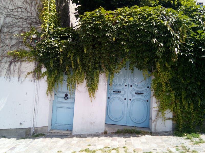 Une porte bleue étrange à Paris photos libres de droits