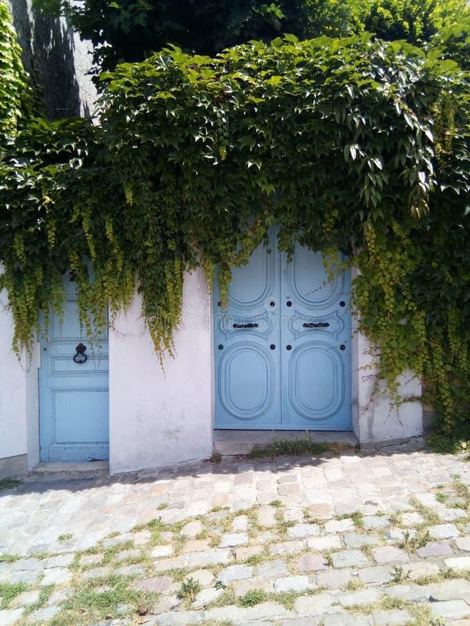 Une porte bleue étrange à Paris image libre de droits