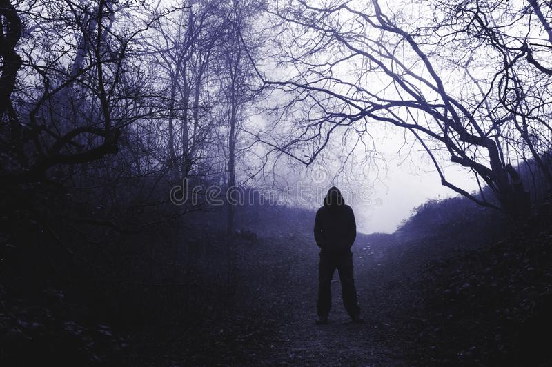 Une position à capuchon effrayante de figure dans une région boisée brumeuse en hiver, avec un bleu dur éditer photographie stock