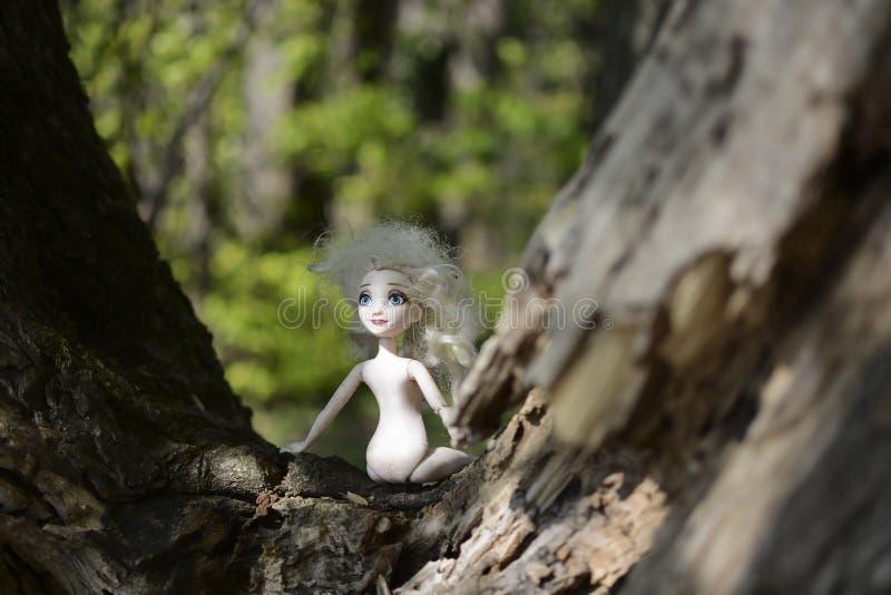 Une poupée d'enfant avec les cheveux blancs, les yeux bleus et aucun vêtements est partie sur un arbre dans une forêt verte photo libre de droits