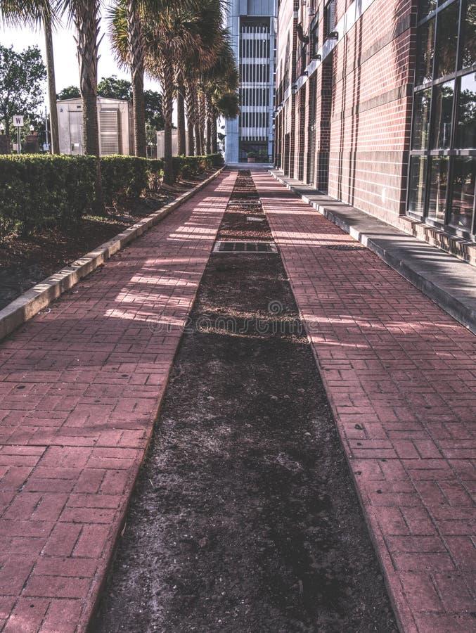 Une promenade latérale dans le centre ville images libres de droits