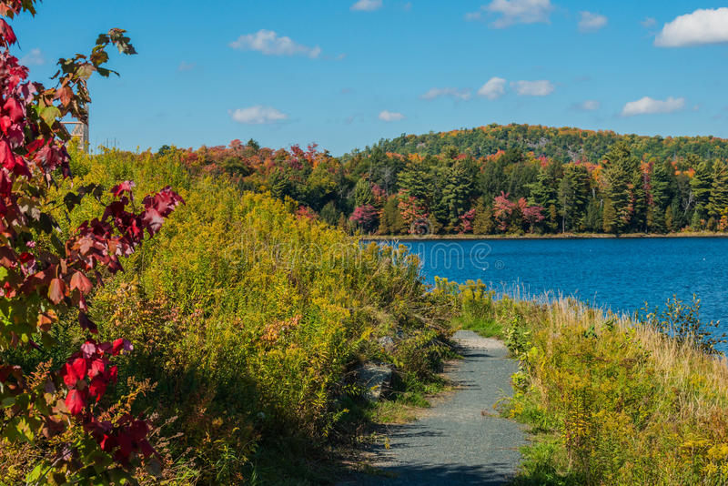 Une promenade par l'automne image libre de droits