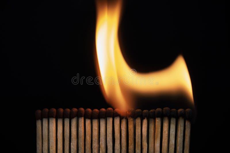 Une rangée des matchs brûlants sur un fond noir La flamme se déplace du match au match image libre de droits