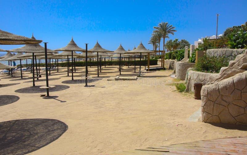 Une rangée des parapluies de paille à protéger contre la surchauffe et les lits pliants sur une plage sablonneuse contre un ciel  image stock