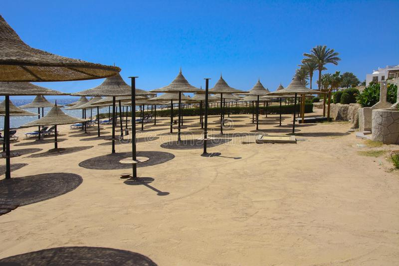 Une rangée des parapluies de paille à protéger contre la surchauffe et les lits pliants sur une plage sablonneuse contre un ciel  images stock
