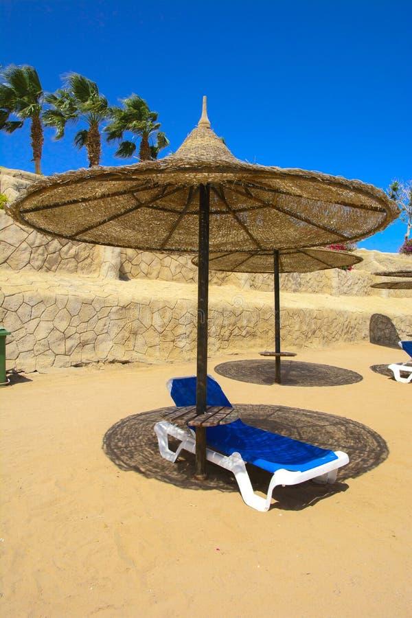 Une rangée des parapluies de paille à protéger contre la surchauffe et les lits pliants sur une plage sablonneuse contre un ciel  photographie stock libre de droits