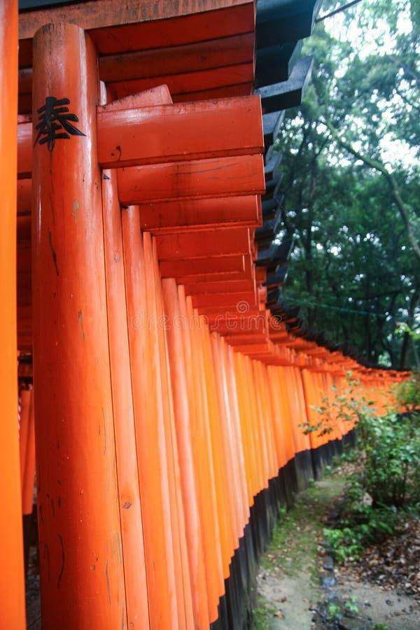 Une rangée des toriis photographie stock libre de droits
