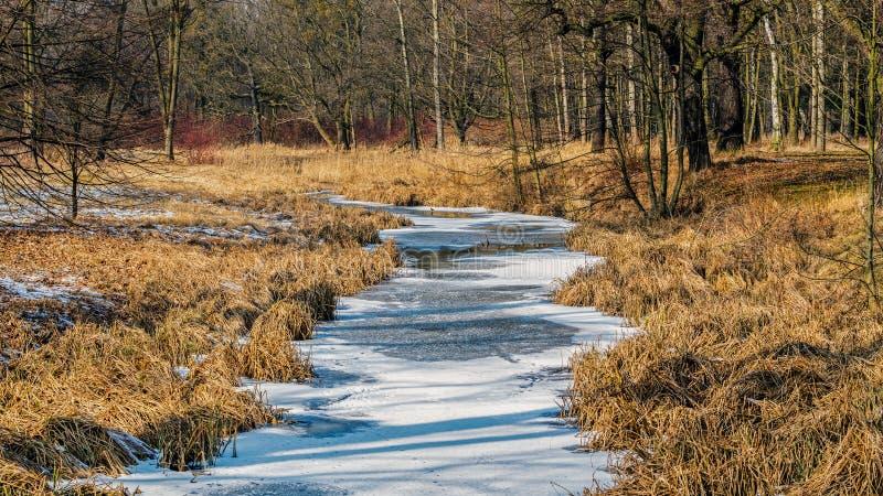 Une rivière congelée photographie stock