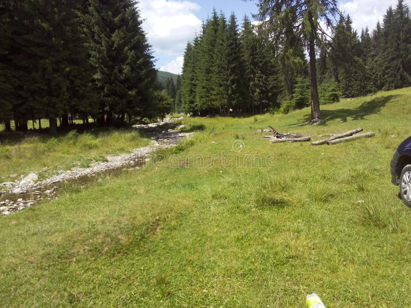 Une rivière de montagne photos libres de droits