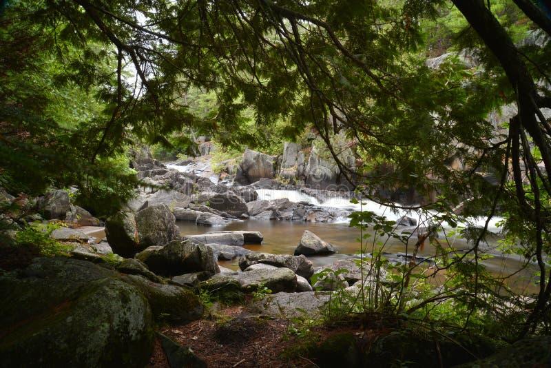 Une rivière encadrée belle par nature photo stock