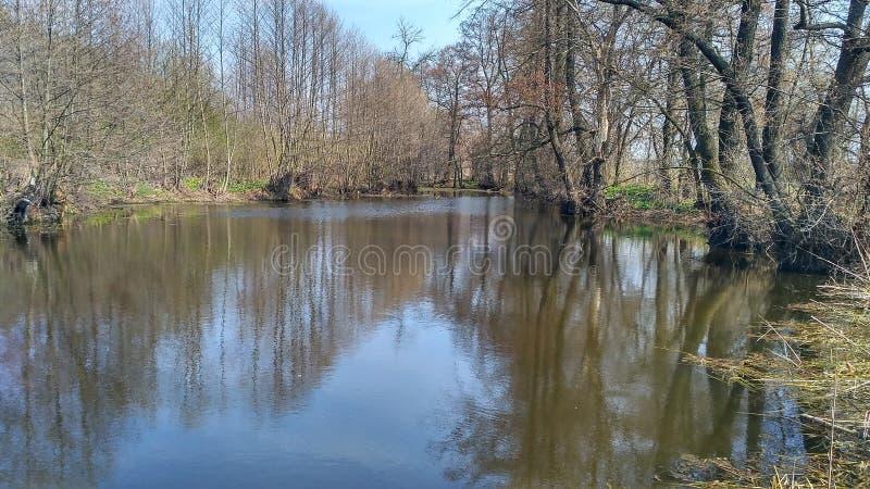 Une rivière pour pêcher en nature images libres de droits