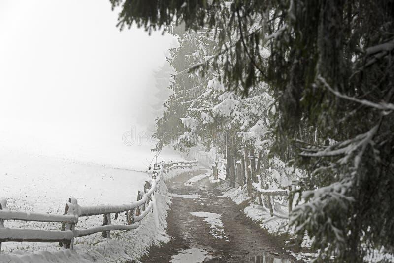 Une route de campagne pendant la saison d'hiver photos stock