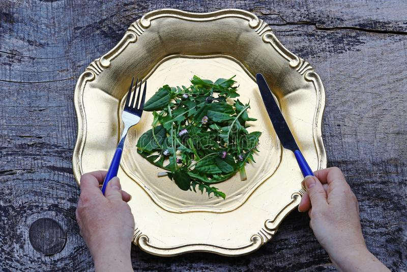Une salade de pissenlit, d'oseille et de marguerite frais image stock