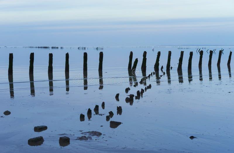 Une scène tranquille de la l$mer des Wadden néerlandaise avec les poteaux côtiers de protection photographie stock libre de droits
