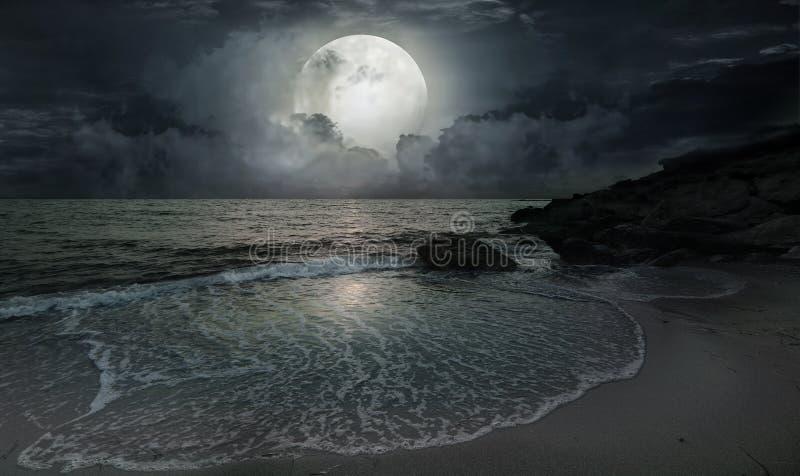 Une soirée tranquille par l'océan photo libre de droits