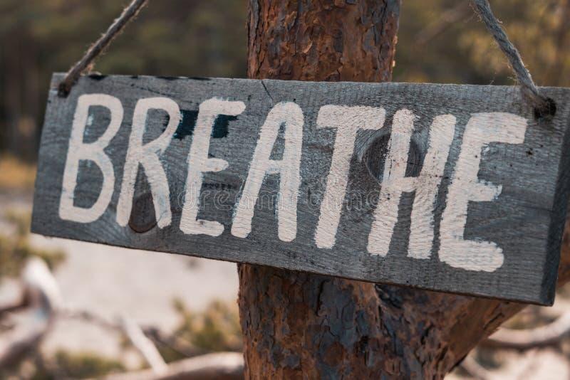 Une tablette motivante en bois sur un vieux pin dans un parc d'automne dit : 'Respirez photo stock