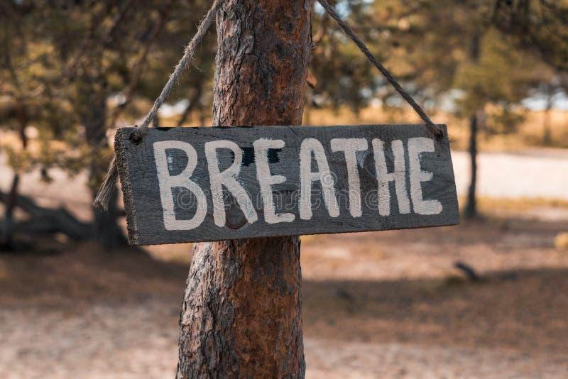 Une tablette motivante en bois sur un vieux pin dans un parc d'automne dit : 'Respirez image stock