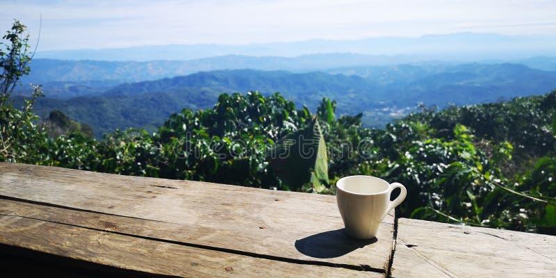 Une tasse de café chaud sur un plancher en bois avec le soleil et les montagnes comme fond image libre de droits