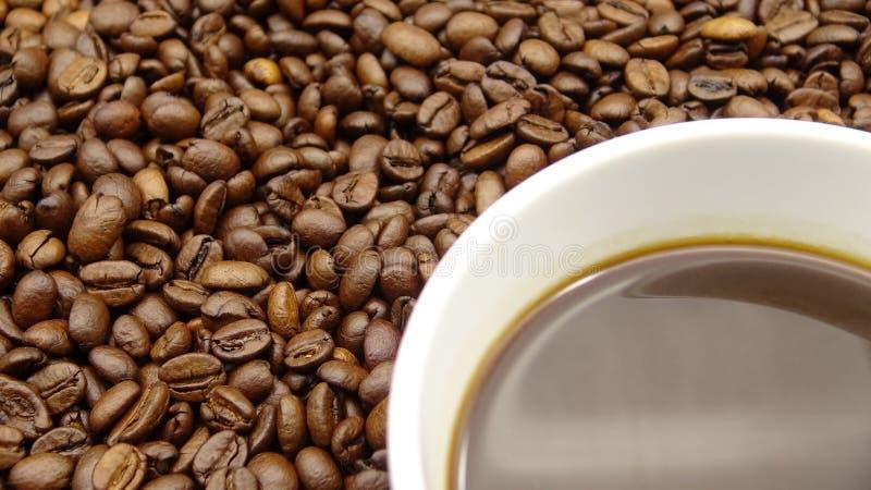 Une tasse de café noir au-dessus des grains de café rôtis photographie stock