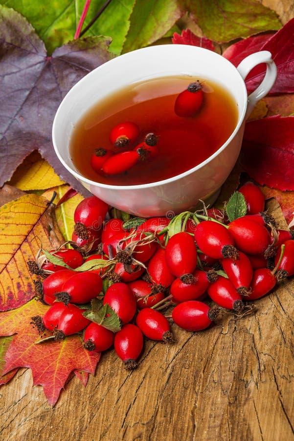 Une tasse de thé de cynorrhodon photographie stock libre de droits