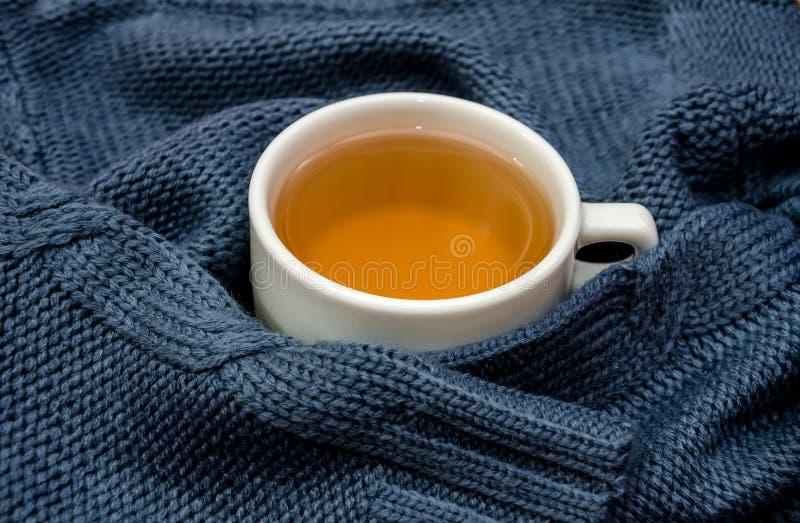 Une tasse de thé enveloppée dans un chandail chaud et bleu photographie stock