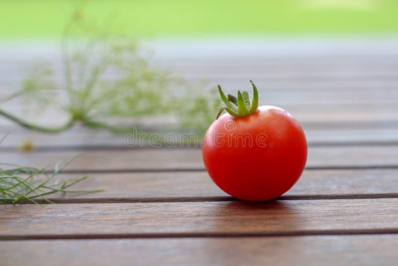 Une tomate-cerise et un aneth simples à l'arrière-plan sur la table foncée images libres de droits