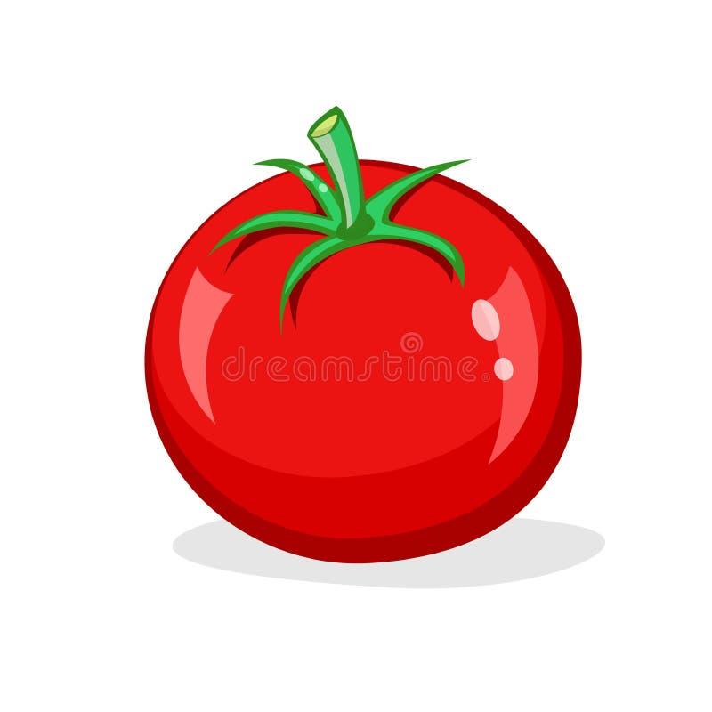 Une tomate rouge sur le fond blanc l gume brillant frais illustration de dessin anim de vecteur - Tomate dessin ...