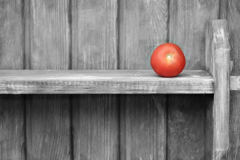Une tomate sur l'étagère images stock