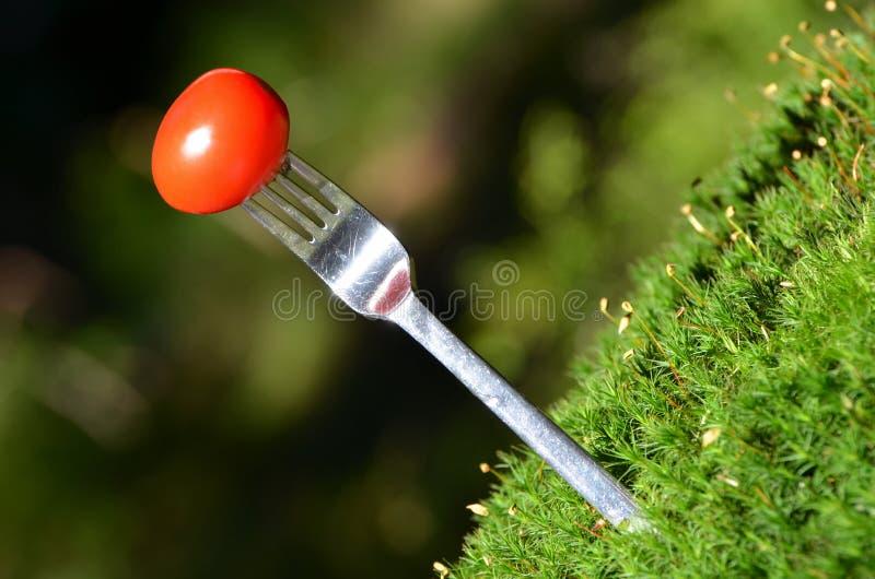 Une tomate transpercée sur une fourchette photo stock